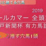 【競馬予想】 オールカマー 2019 事前予想 全頭診断 神戸新聞杯 有力馬診断