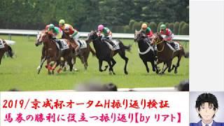 2019京成杯オータムハンデ/振り返り検証★競馬レース結果分析シリーズ