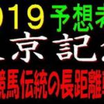 東京記念2019予想考察|大井競馬伝統の長距離戦です