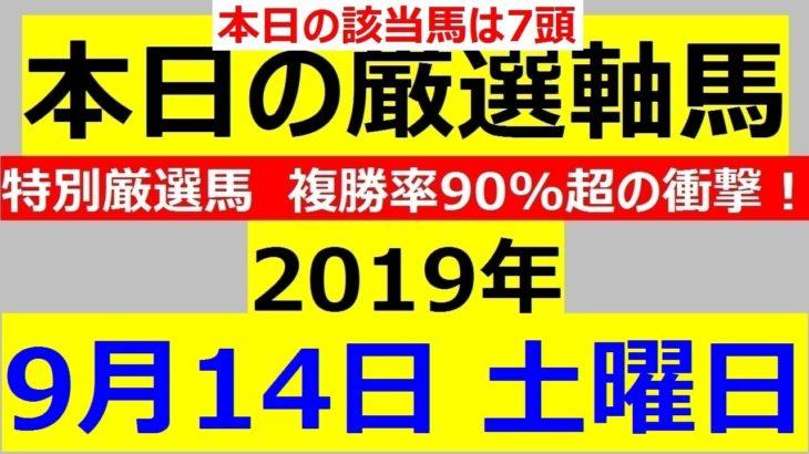 毎日更新 【軸馬予想】■中山競馬■阪神競馬■盛岡競馬■佐賀競馬■2019年9月14日(土)