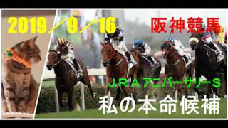 2019/9/16 阪神競馬 JRAアニバーサリーステークス 私の本命候補