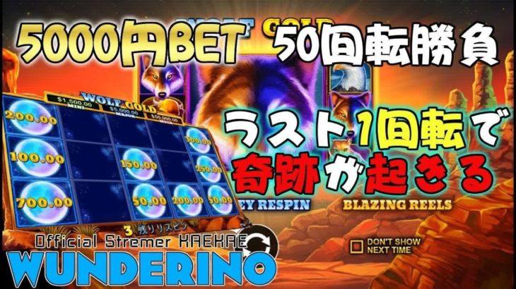 $50BET!ラスト一回転で僥倖!【WOLF GOLD $50BET】【オンラインカジノ】【WUNDERINO公式配信者kaekae】