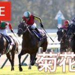【競馬レース中継】『 菊花賞 』 10月予想バトル 準決勝