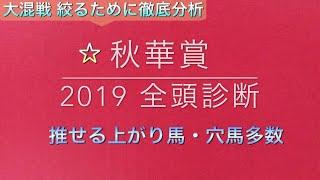 【競馬予想】 秋華賞 2019 事前予想 全頭診断