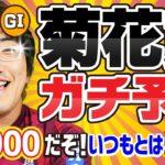 【競馬予想】 2019 菊花賞 「芝3000だぞ!いつもとは違うんだ!」