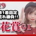 【競馬予想】菊花賞2019三連単1着固定ヒモ荒れ勝負!【五十嵐レイ】