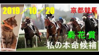 2019/10/20 京都競馬 菊花賞(GⅠ)私の本命候補