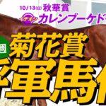 【菊花賞】長距離戦は馬体で決まる!元大手牧場スタッフの評価トップ3!G1フォトパドック 2019【競馬予想】