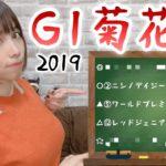 【競馬予想】G1 菊花賞 2019【さくまみお】