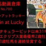【競馬】ルッキンアットラッキー Lookin at Lucky【No 700】