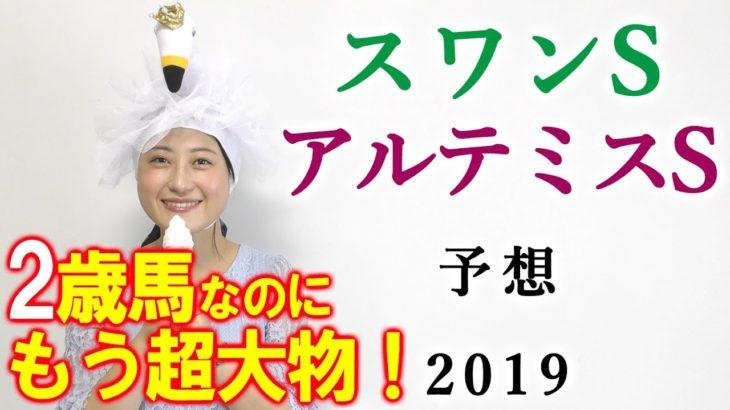 【競馬】スワンS アルテミスS 2019 予想(来年の天皇賞馬候補がいますね) ヨーコヨソー