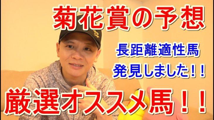 【わさお】菊花賞の予想!!【競馬予想】