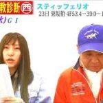 【競馬エイト調教診断】天皇賞・秋柳&ミッキ)