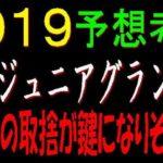 兵庫ジュニアグランプリ2019(園田競馬)予想考察|地方馬の取捨が鍵になりそうです