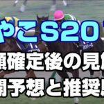 【競馬予想】みやこステークス2019 枠順確定後の見解!展開予想と推奨馬