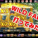 【WILD FALLS】Playngo ゴールドラッシュなるか!?オンラインカジノ