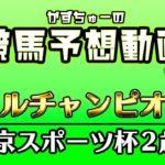 -かずちゅーの競馬予想動画-vol.35-マイルチャンピオンS、東京スポーツ杯2歳S