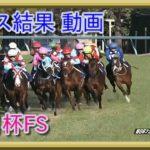 競馬 朝日杯フューチュリティステークス レース結果 動画 2019年