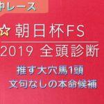 【競馬予想】 朝日杯FS 2019 事前予想 全頭診断