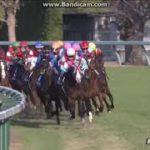 【競馬】朝日フィーチュリティS サリオス圧巻!ハーツクライの時代へ