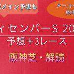 【競馬予想】 ディセンバーS 2019 予想 浜松S 北総S 元町S