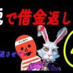 【カジ旅】白兎ちゃんか完全に味方・・・!?もみもみタイム【ホワイトラビッツ】
