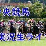 【中央競馬】競馬実況ライブ 中山大障害&阪神カップほか