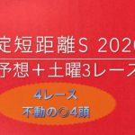 【競馬予想】 淀短距離ステークス 2020 予想 逢坂山特別