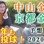 【競馬】 中山金杯 京都金杯 2020 予想(年を越しても、この買い方で攻略したい!) ヨーコヨソー