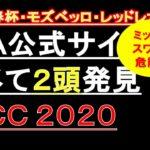 【競馬予想】AJCC 2020 JRA公式サイト調べて発見!