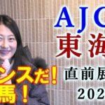 【競馬】AJCC 東海ステークス2020 直前展望(TCK女王杯は馬連16.2倍的中!) ヨーコヨソー