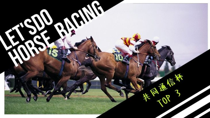 【競馬予想】共同通信杯 2020 〜最終追い切り評価・馬場が渋れば浮上してくる馬がいる!!〜