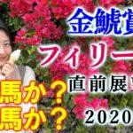 【競馬】金鯱賞 フィリーズレビュー 2020 予想(名古屋大賞典はブログで予想!) ヨーコヨソー