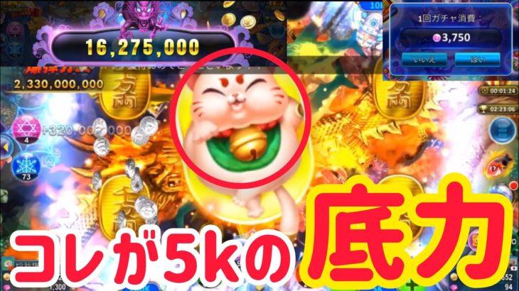 【オーシャンキング】5kの流れキター猫&黒龍【ノニコム】