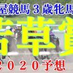 若草賞【名古屋競馬2020予想】3歳牝馬重賞