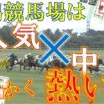 【競馬検証】今年の新潟競馬場は1番人気×中穴が良く来る!?馬連5頭流し☆【実践☆】