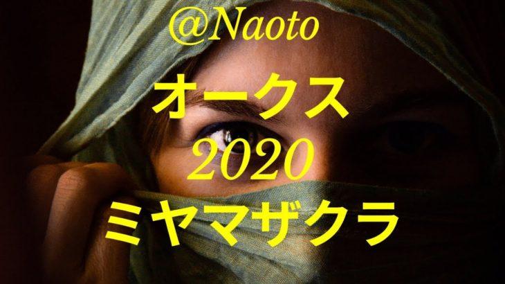 【オークス2020予想】ミヤマザクラ【Mの法則による競馬予想】