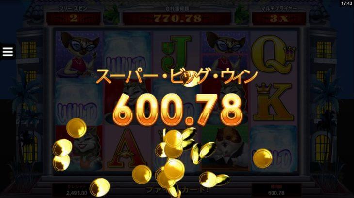 【オンラインカジノ】Kitty Cabana bigwin