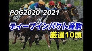 【競馬】POG2020-2021 ディープインパクト産駒厳選10頭