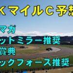 2020年 NHKマイルカップ【ぜんこうの競馬予想 週末日曜版 4強以外で狙いたい馬は〇〇】