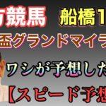 【地方競馬】船橋11R 京成盃グランドマイラーズを坂東英二が予想!?【スピード予想】