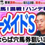 【競馬ブック】マーメイドステークス 2020 予想【TMトーク】