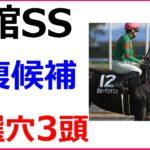 函館SS 2020 競馬予想 厳選穴馬3頭と人気馬診断