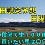 2020年 安田記念予想【ぜんこうの競馬予想 日曜版】