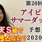 【競馬】アイビスサマーダッシュ 2020 予想(日曜新馬戦と大雪ハンデキャップの予想はブログで!) ヨーコヨソー
