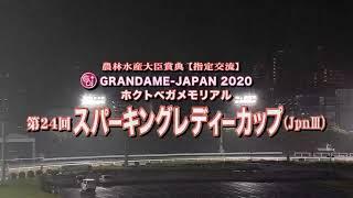 【川崎競馬】スパーキングレディーカップ2020 レース速報
