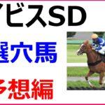 2020 アイビスサマーダッシュ 競馬予想 厳選穴馬3頭と人気馬診断