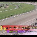 【盛岡競馬】マーキュリーカップ2020 勝利騎手インタビュー
