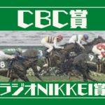 【2020CBC賞/ラジオNIKKEI賞】良血馬の開花?競馬オタクの最終結論!