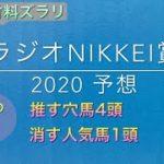 【競馬予想】 ラジオNIKKEI賞 2020 予想
